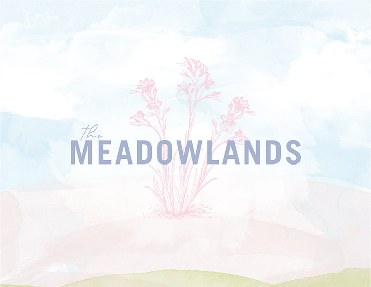 the-meadowlands-townhomes