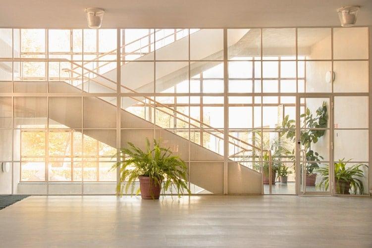 plants on building lobby