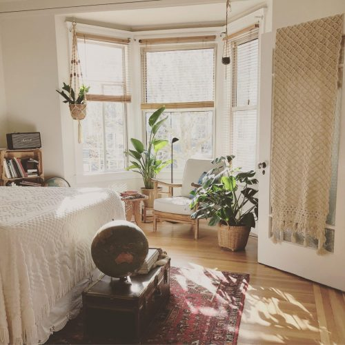 small apartment with plants